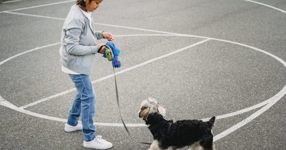 vlooien bij honden